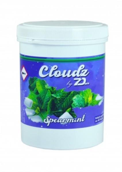 Cloudz by 7Days Dampfsteine - Spearmint - 500g